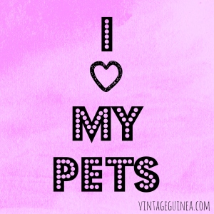 iheartmypets